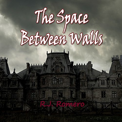The Space Between Walls cover art