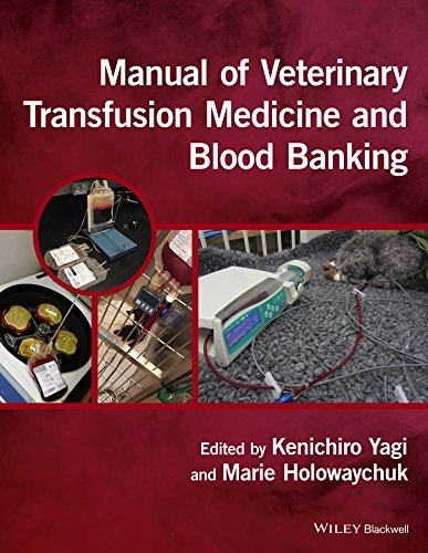 Compare Textbook Prices for Manual of Veterinary Transfusion Medicine and Blood Banking 1 Edition ISBN 9781118933022 by Yagi, Kenichiro,Holowaychuk, Marie