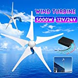 TQ 5000W Wind Generator 12V/24V 5 Wind Blades Wind-Power Electricity Generator with...