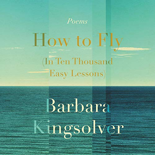 How to Fly (in Ten Thousand Easy Lessons) Titelbild