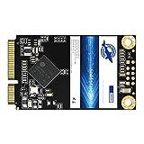 Dogfish Msata 32GB 60GB 64GB 120GB 128GB 240GB 250GB 480GB 500GB Internal Solid State Drive Mini Sata SSD Disk (256GB)