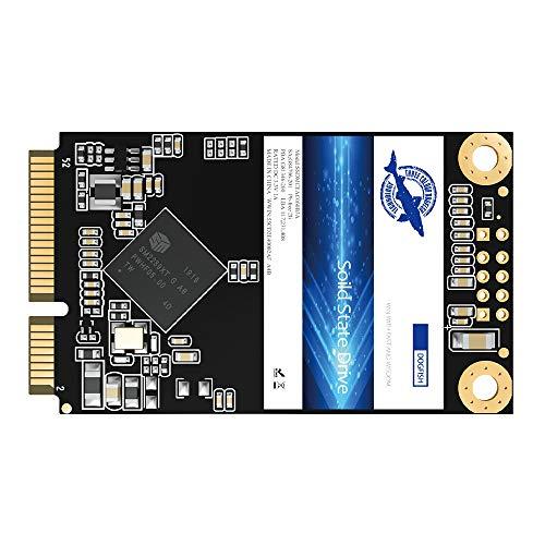 Dogfish Msata SSD 256GB unità a Stato Solido Interne Drive Hard Disk Internal Solid State Drive Mini Sata SSD Disk (256gb, Msata)