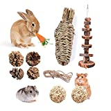 Fansisco Handmade Pet Chew Toys with Hay Grass Carrot Toys Apples Wood Molar String Carrot Toys Chew Toys for Rabbit Bunny Hamsters Chinchilla Guinea Pigs or Other Rodent Pets (30209)