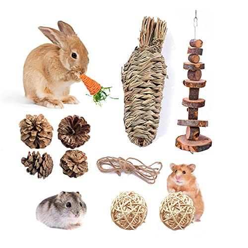 Fansisco Handmade Pet Chew Toys with Hay Grass Carrot Toys Apples Wood Molar String Carrot Toys Chew Toys for Rabbit Bunny Hamsters Chinchilla Guinea Pigs or Other Rodent Pets (30209), 30209