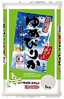 【精米】(令和2年産)北海道JA南るもいゆめぴりか5kg×2袋セット