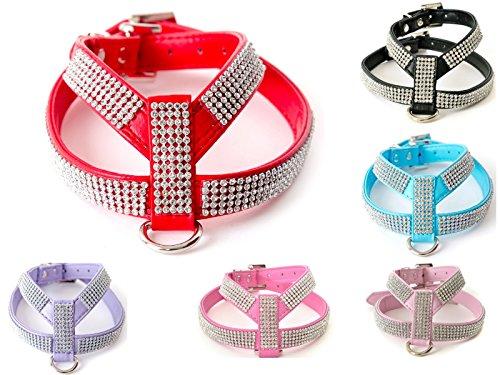 Lushpetz Arnés para Perros de Cuero con Banda de Diamantes
