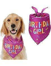 HAPPY HACHI Cumpleaños Bandana Perro Pañuelo Perrito Suave Adorable Bufandas Perro Hembra Macho Pequeño Grande Decoración Fiesta Regalo De Cumpleaños Morado