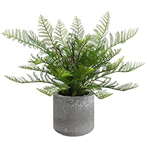 15″ Lace Fern Silk Plant w/Cement Pot -Green (Pack of 4)
