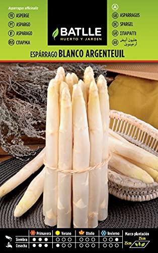 Semences horticoles de Batlle - Asperge blanc Argenteuil (4g)