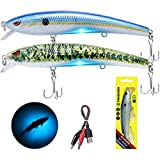 TRUSCEND Electronic Twitching Jerkbait - Robotic Fishing Lures Rechargeable LED Minnow - Bionic...