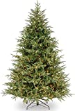 National Tree Company 'Feel Real' Pre-lit Artificial Christmas Tree | Includes Pre-strung White Lights | Frasier Grande Tree - 7.5 ft