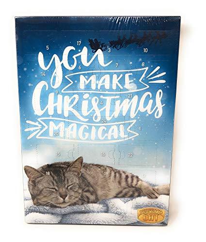 Perfecto Cat Adventskalender für Katzen