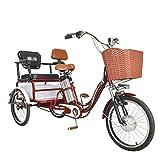 Triciclo eléctrico con 3 Ruedas for Adultos, Coche de Turismo, hogar del Coche eléctrico de 20 Pulgadas, Scooter de Edad, Doble ty el Asiento JIAJIAFUDR (Color : Red, Size : 48V12AH)