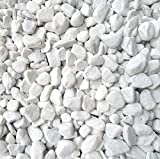 Xabian - Piedras decorativas (5 kg, 18-25 mm), color blanco