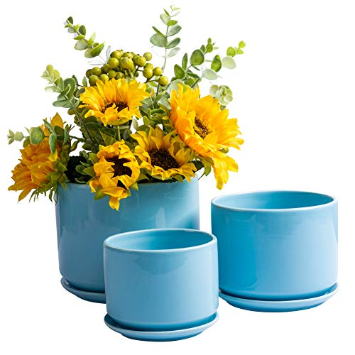 BUYMAX Succulent Plant Pots 4.2+5.2+6.2 in Glazed Ceramic Planters with Connected Saucers, Round Modern Ceramic Flower pots - Small to Large Sized Plant pots, Set of 3 (Light Blue)