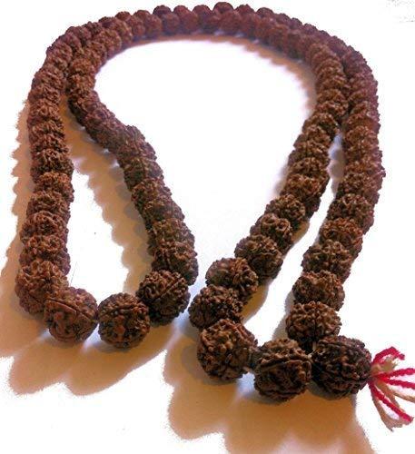 Terrapin Trading 10 mm GRANDE-BODHI-SEED-NUT-MALA-MANTRA-PREGHIERA-perle-buddista-monaco-collana-N39
