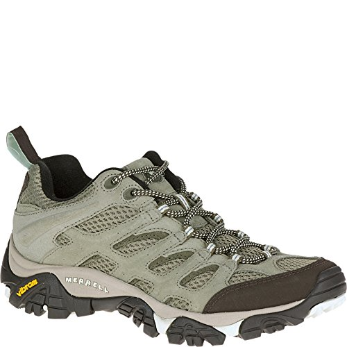Merrell Women's Moab Ventilator Hiking Shoe,Aluminum/Marlin,6 M US