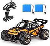 RC ferngesteuertes Auto  Monstertruck,High Speed Car Fahrzeug  mit  wiederaufladbaren Akku Fernsteuerung -