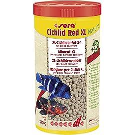 sera Cichlid Red XL