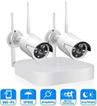 DCZ IP Security Camera System, 2 Channel Video NVR Recorder with 2 Pcs 960p Waterproof IP66 Camera CCTV Indoor/Outdoor Hom...