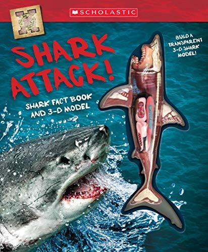 shark model - 6