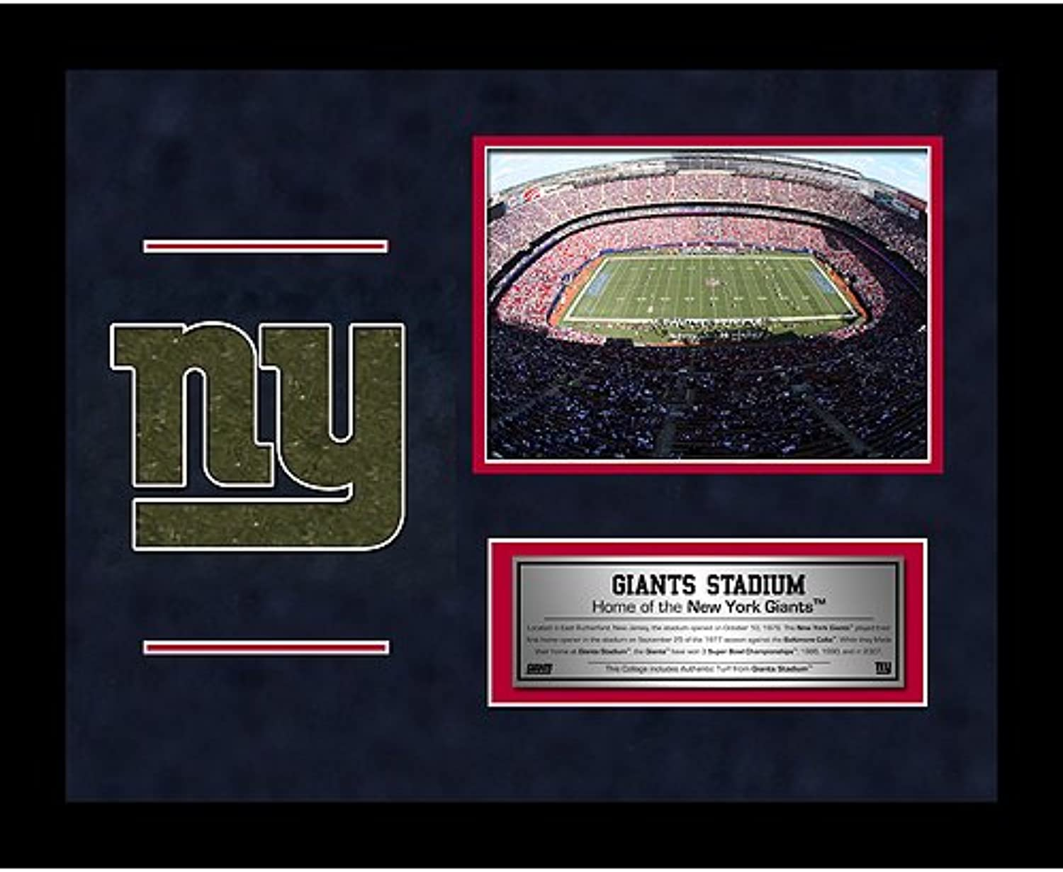 NFL New York Giants Stadium 11 x 14Inch Arial Overhead Turf Collage