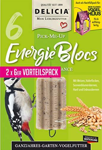 frunol delicia EnergieBloc, Größe L, 1er Pack (1 x 95 Grams)
