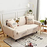 UTDFEOPSG Sofa CoversOne Pillow Cover,Protector Sofa Cover Stretch For Armchair, Sofa Covers For Living Room Slipcovers Couch Set E 45 * 45cm (18-18inch)