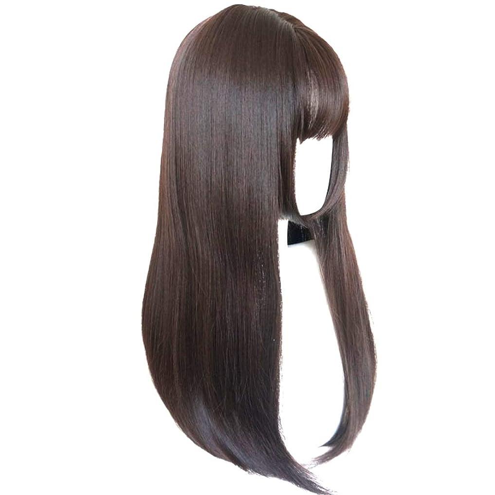 降伏中傷ジャンルSummerys かつら完全なかつら女性のための耐熱性耐熱性でかつらストレートロング人工毛