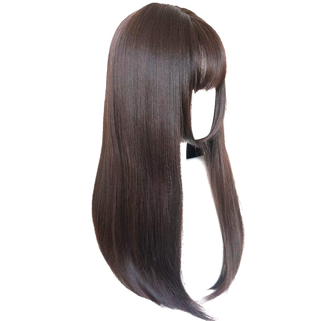 ネックレス大破落ち着いたKerwinner かつら完全なかつら女性のための耐熱性耐熱性でかつらストレートロング人工毛