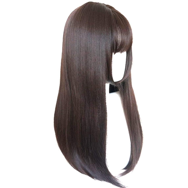 落ちた毛細血管トレイルSummerys かつら完全なかつら女性のための耐熱性耐熱性でかつらストレートロング人工毛