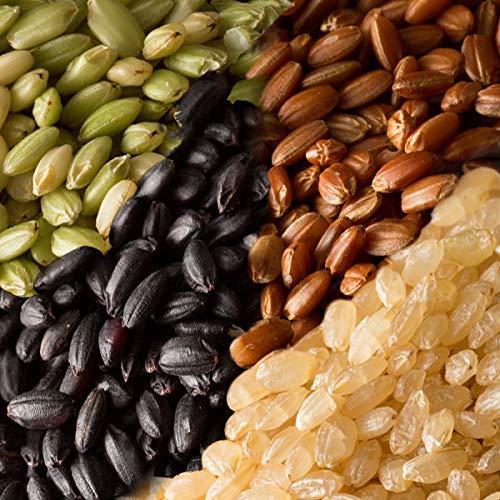 雑穀 雑穀米 国産 古代米4種ブレンド(赤米/黒米/緑米/発芽玄米) 10kg(500g×20袋) 送料無料※一部地域を除く 雑穀米本舗
