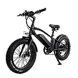 Bicicleta eléctrica para Adultos Fat Tire Bicicleta de montaña de Ciudad 750W 48V 10AH Doble baterías