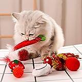 JYY The Cat Toy Set de Navidad Cosquillas El Gato