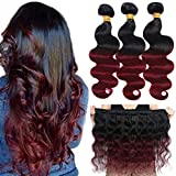 Ombre Brazilian Hair Body Wave Bundles 3pcs,Ombre Brazilian Virgin Hair Human Hair Weave Two Tone Black to Burgundy (T1B/99J,14' 16' 18')