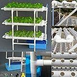 Kaibrite Kit de Hidroponía para Verduras Verduras de Hoja en Casa, en El Jardín y en La Oficina Tubería Hidropónica de PVC Kit de Hidroponía 108 Sitios 12 Mangueras.