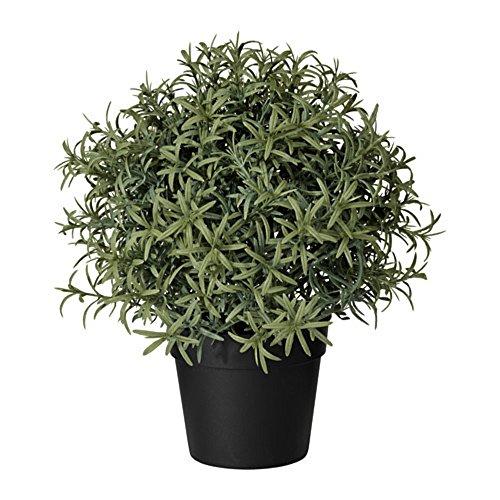 IKEA/イケア FEJKA:人工観葉植物22 cm ローズマリー(403.821.15)