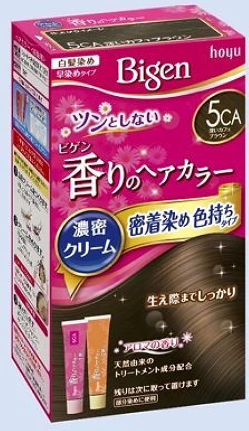 ロボット然とした虹ビゲン 香りのヘアカラー クリーム 5CA 深いカフェブラウン × 10個セット