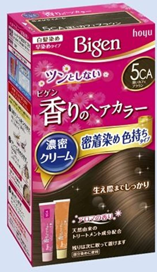 技術的なスキム狂気ビゲン 香りのヘアカラー クリーム 5CA 深いカフェブラウン × 10個セット