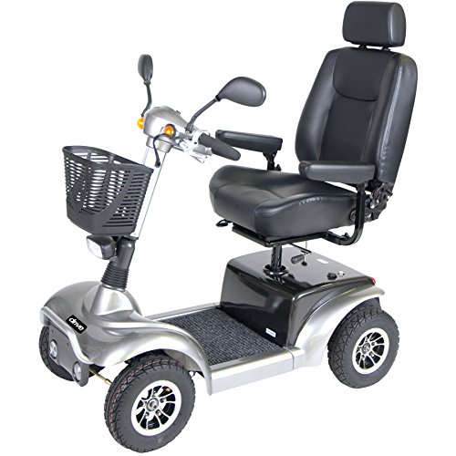 Fantastic Deal! Drive Medical Prowler Mobility Scooter, 4 Wheel, 22 Inch