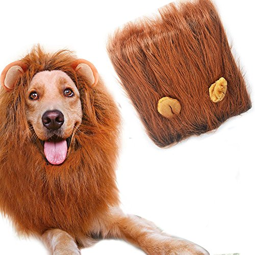 owikar Pet Hund Löwe Mähne Perücke Kostüm Hat Head Kapuze niedliche Verstellbare waschbar bequeme Löwe Hair Dress Up für Halloween Weihnachten Ostern Festival Party Aktivität Cosplay Decor