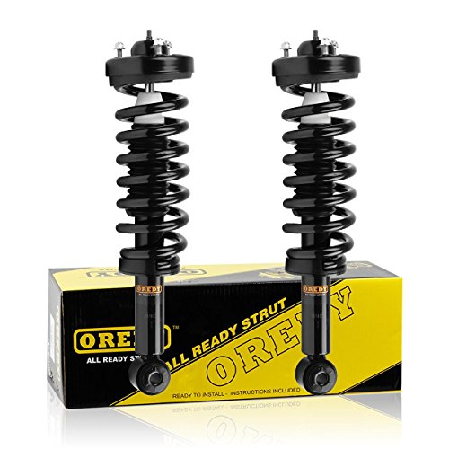 OREDY Shocks Struts Front Pair Complete Struts Assembly Coil Spring Suspension Struts Kit 11306 171141 Compatible with F150 4WD 2009 2010 2011 2012 2013