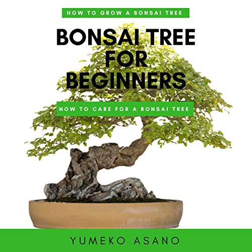 Bonsai Tree for Beginners audiobook cover art