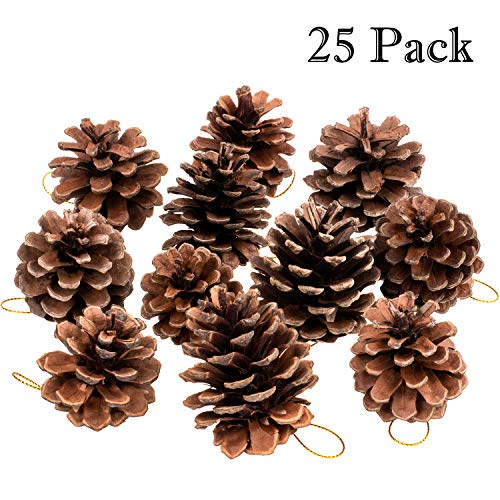 Whaline Natural Pine Cones, Christmas Rustic Pinecones Bulk Ornaments with String for Crafting for Home Accent Decor, Fall Thanksgiving Tree Decoration (25 Pieces,1.6-2.4 Inches)