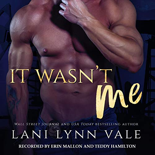 It Wasn't Me audiobook cover art