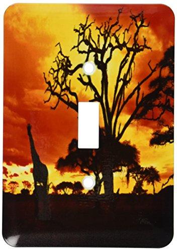 African Giraffe On African Plains