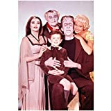 The Munsters 8 X 10 Cast Photo Herman, Lily, Grandpa, Eddie & Marilyn Munster Red Background Pose 3 kn