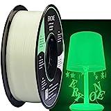 Eryone Glow in Dark Filament,PLA Filament 1.75mm,Glow Green in the Dark filament, 3D Printer Filament 1kg/Roll