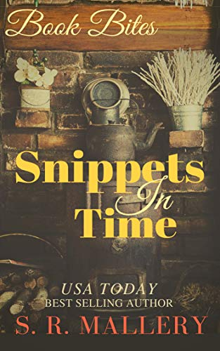 Book: Snippets In Time by S. R. Mallery