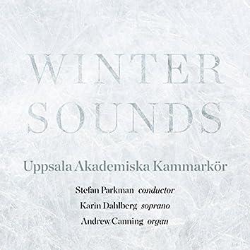 Winter Sounds
